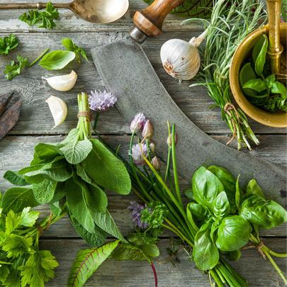 עשבי מרפא ותערובת צמחים